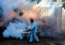 Mosquito control: A Nicaraguan health worker fumigates an area in Managua.