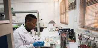 A medical scientist at the NICD prepares listeria samples for DNA sampling.