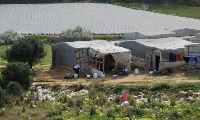 Spanish farm workers